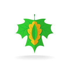 Maple oak and ash tree leaves logo vector image