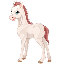 Horse foal vector image vector image