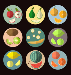 a set of fruit icons in a flat style vector image