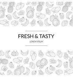 fresh and tasty banner templatetropical exotic vector image