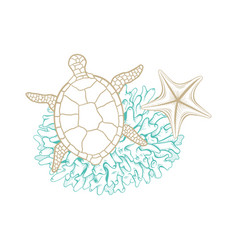 marine golden line art seashell turtle and coral vector image