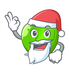 Santa green smith apple isolated on cartoon vector