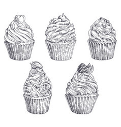 set of hand-drawn cupcakes template for vector image