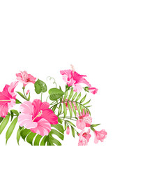 Tropical flower garland isolated over white vector