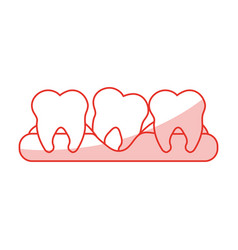 red shading silhouette cartoon set tooth in gum vector image vector image
