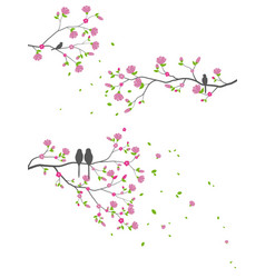 beautiful tree branch with birds silhouette vector image