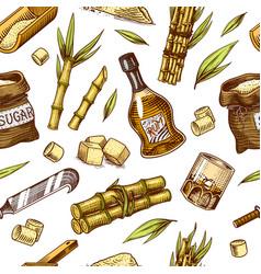 cane sugar seamless pattern sugarcane plants vector image