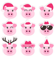 cartoon cute pigs with christmas santa hats vector image