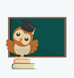 cute owl with books on a blackboard vector image
