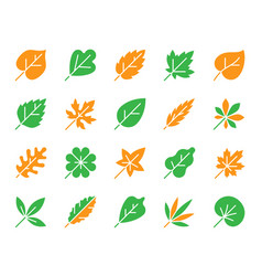 Organic leaf simple color flat icons set vector