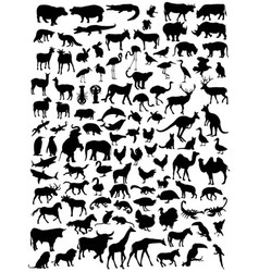 various types animal silhouettes vector image