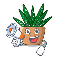 With megaphone mini zebra cactus on cartoon pot vector