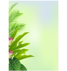 beauty decoration with tropical plant vector image