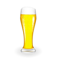 naturalistic glass with fresh light cold beer in vector image