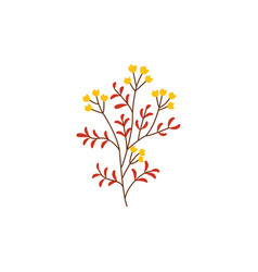 Autumn plant branch with ripe yellow berries and vector