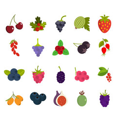 berries icon set flat style vector image