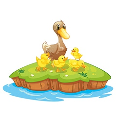 Five ducks in an island vector image