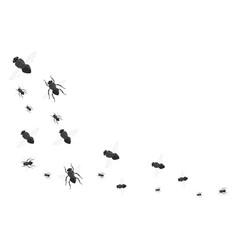 Flies black silhouette set vector