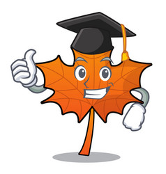 Graduation red maple leaf character cartoon vector