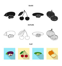 Isolated object of vegetable and fruit logo set vector