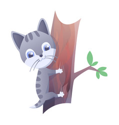 Kitty house domestic cat vector