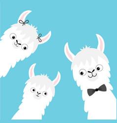 Llama alpaca family head face set mother father vector