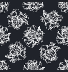 seamless pattern with hand drawn chalk globeflower vector image