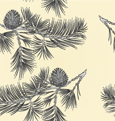 Seamless texture branch Pine and pine cone vector image