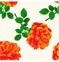 Seamless texture flower orange rose stem vintage vector