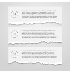 set lacerated sheets vector image