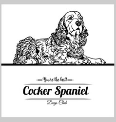 cocker spaniel dog - for t vector image