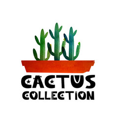 Cute lettering text collection of cacti logo for vector