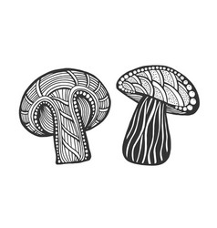 hand drawn magic mushroom vector image