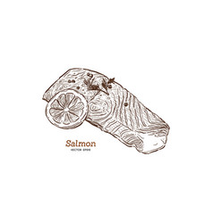 salmon steak hand drawn vector image