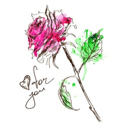 Sketch and watercolor rose vector