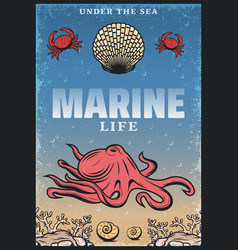 vintage colored sea life poster vector image
