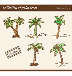 Palm Tree Collection vector image