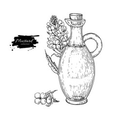 Bottle of mustard oil with plant hand vector