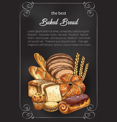 Bread sketch poster for bakery shop vector