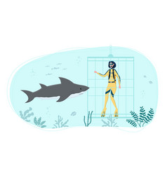 diver in diving cage observing white shark vector image