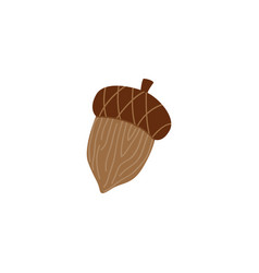 Mature brown acorn - oak nut for seasonal autumn vector