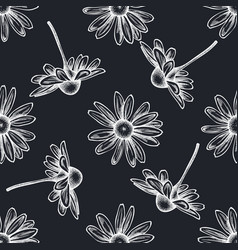 seamless pattern with hand drawn chalk chamomile vector image