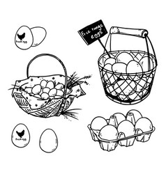 set farmers eggs drawings vector image