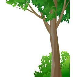 Tree and bush on a white background vector image