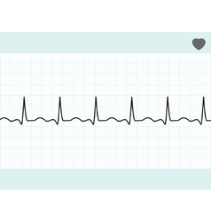 normal electrocardiogram ecg eps 8 vector image vector image