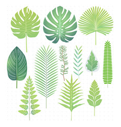 green tropical leaves set vector image