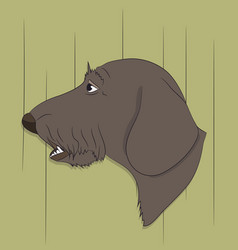 portrait of a dog dachshund look down vector image