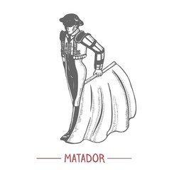 Spanish matador in graphic hand drawn style vector