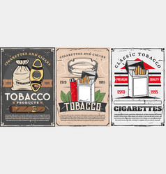 Tobacco items cigars and cigarettes vector
