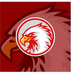 eagle head red background logo design sign vector image
